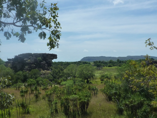Kakadu national park with a jabiru bird perched on the rocks surveying all (far left)